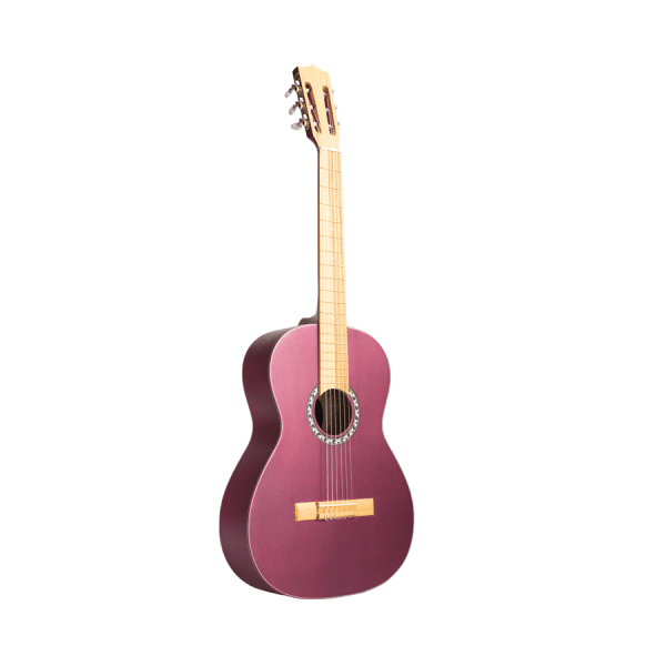 guitarra ibagué