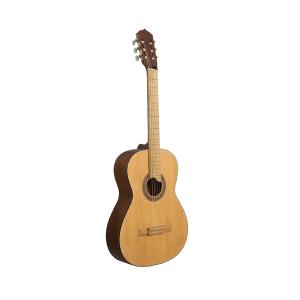 guitarra el arca